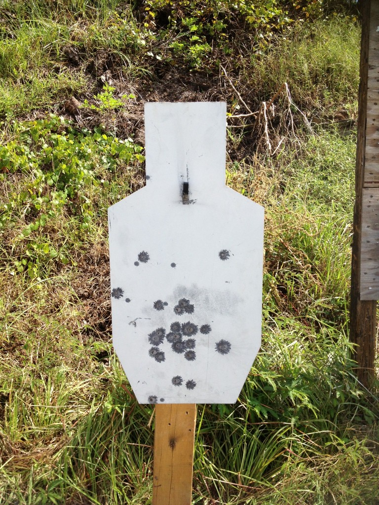 200 yard rifle steel
